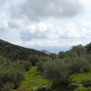 The view from Agrilies area near Lefkes