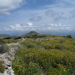 Going downhill at Tourlos area close to Lefkes