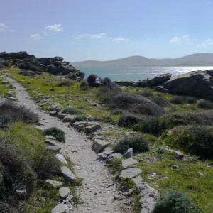 On the footpaths of Aghios Ioannis Park