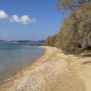 Walking along the shoreline to Voutakos beach