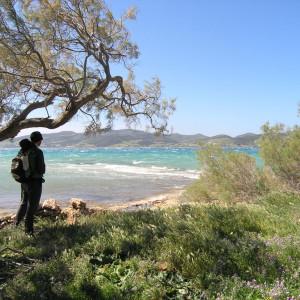 View to Antiparos from Pounta