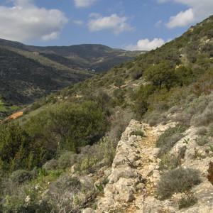 Footpath along Kavouropotamos stream, Aspro Chorio, Paros