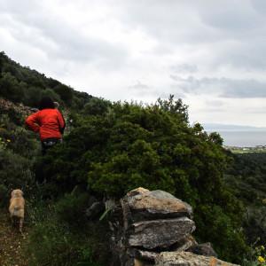 Walking on the Langada-Dryos footpath, Paros