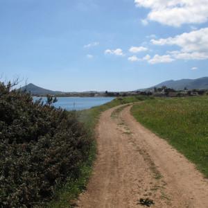 Paros, Tsoukalia beach in springtime