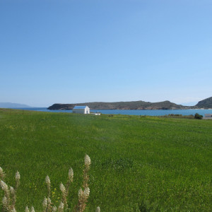 The way to Molos beach, Paros, springtime