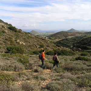 On the Kantnelia hill footpath, south of Naoussa