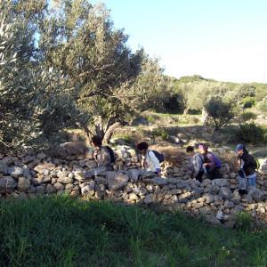 Walled footpath to Raches hill near Kostos village