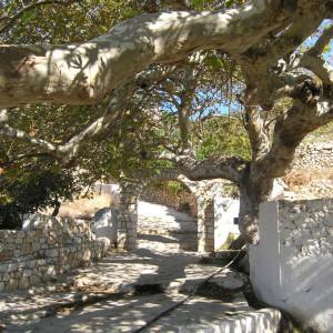 The spring at Mersini, Donousa island