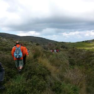 Along the way to Vounia, Paros