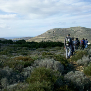 On the way to Elitas & Parikia, Paros