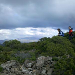 On the shepherds' trail on Prasovounia, Antiparos