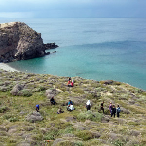 Encountering beautiful coves at north Antiparos