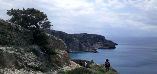 On the rugged, lace-like NW coastline of Antiparos