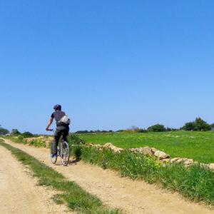 #Bike_Hike_Aliki_Pounta12#Aliki#pounta#beach#coastal#paros#greek#islands#greece#cyclades#kykladen#inseln#isles#trails#footpaths#hiking#walking#trekking#biking#cycling#bikehike#adventure#experience#sunset#tours