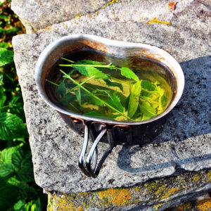 Fresh mint & sage tea during the Parian Herbs, Cheese & Wine Tour, Paros island, Cyclades, Greece.